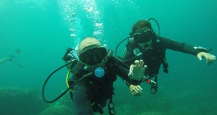 Discover scuba diving in Cham Island