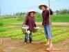 eco-tour-vegetable-farming-fishing-village