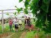 hoi-an-eco-travel-tra-que-village-3