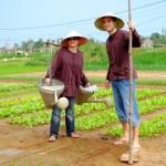Eco tour - Vegetable Farming & Fishing Village